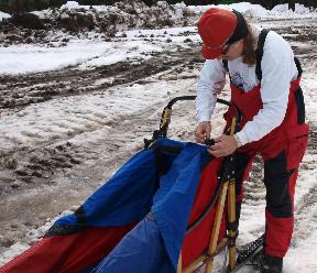 Racer preparing their sled