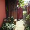 pink mcgrath west side original wysteria