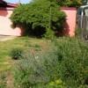 pinkhouse mcgrath front side mock orange
