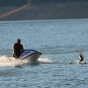 jet ski chases ducks and ducklings