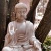 zen buddha morguefile