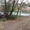 Reginato River Trail pic 3