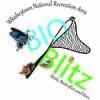 BioBlitz-2016-CMS-feature-image