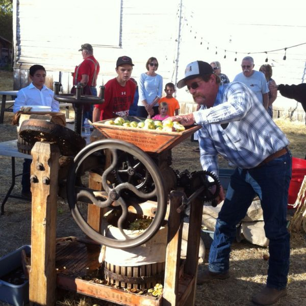 Tom Fee begins the process of apple pressing by grinding up the fruit on his family's century-old machine.