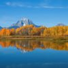 oxbow-bend7
