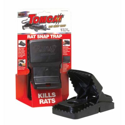 This is Doni's preferred rat trap.