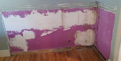 mold in doni 39 s bedroom
