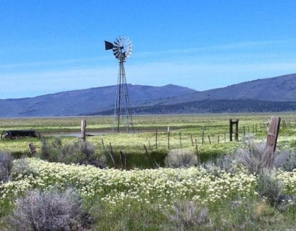 A windmill south of Madeline on Highway 395 reminds motorists that agriculture still thrives in the high desert. Photo by Hal Silliman.
