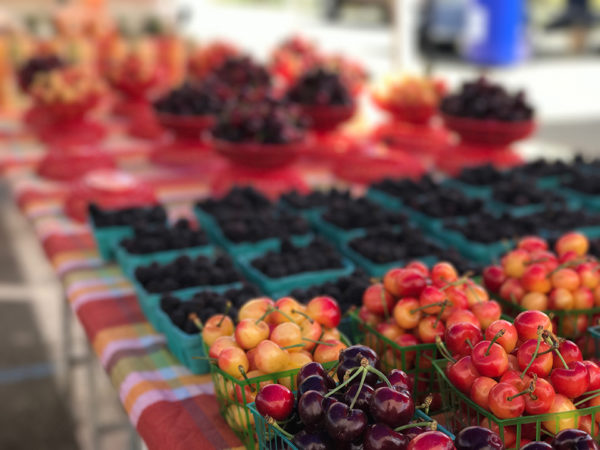 Fresh berries & cherries ripe for the picking. Photo by Courtney Paige