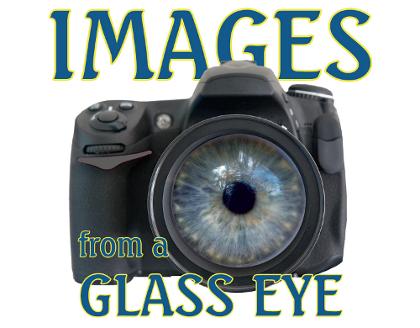 glasseyelogo-whtbkgnd