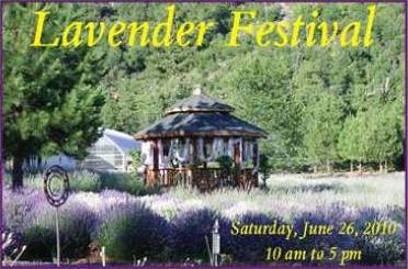lavenderfestival