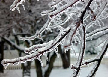 ice_storm_047