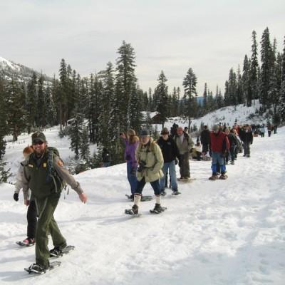 Ranger Snowshoe Walk