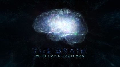 title-treatment-THE-BRAIN-WITH-DAVID-EAGLEMAN