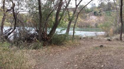 Reginato River Trail pic 3