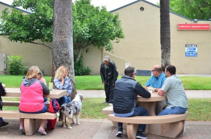 A denizen of Library Park in downtown Redding stopped by to play with a dog owned a member of a group who gathered for lunch Wednesday. Their purpose was to show him and the hordes of loiterers like him that this park was for the enjoyment of law-abiding citizens.
