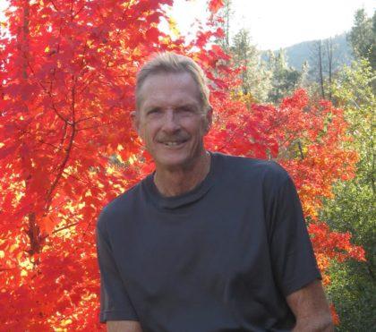 bill-siemer-fall-trees