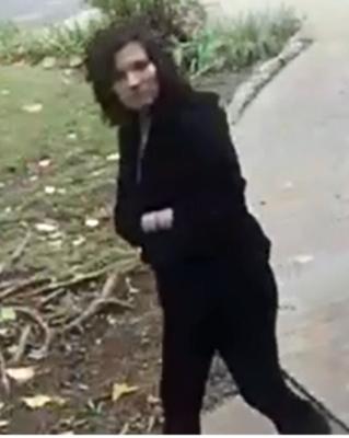suspect-1