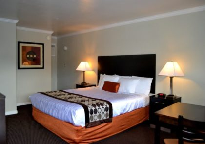 All the rooms at the Thunderbird Lodge have been completely remodeled. Everything is new.