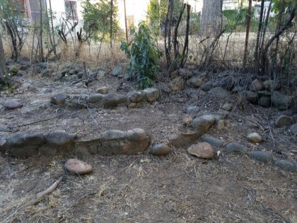 Doni's yard is a rock garden.